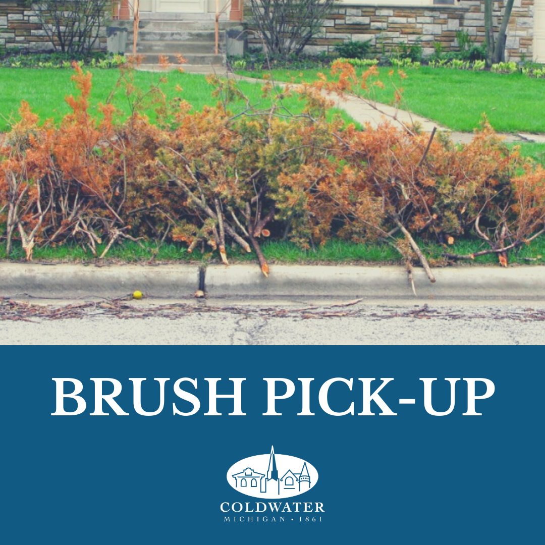 Brush Pick-up Starts Today (2)